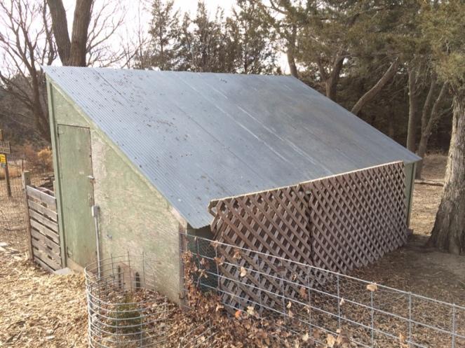 Chicken Coop North Side