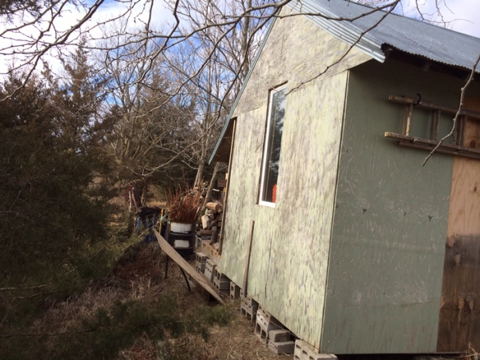 D. Wood Shed South Side
