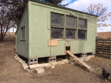 Chicken Coop South Side