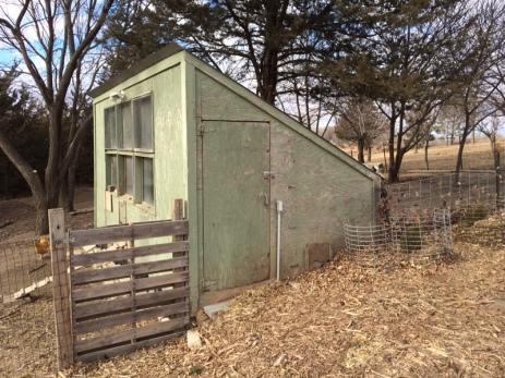 Chicken Coop East Side