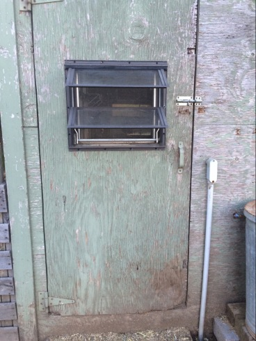 Reused old window in chicken coop door