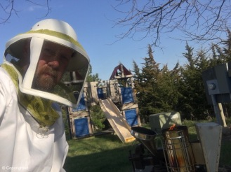 Getting ready to check hive
